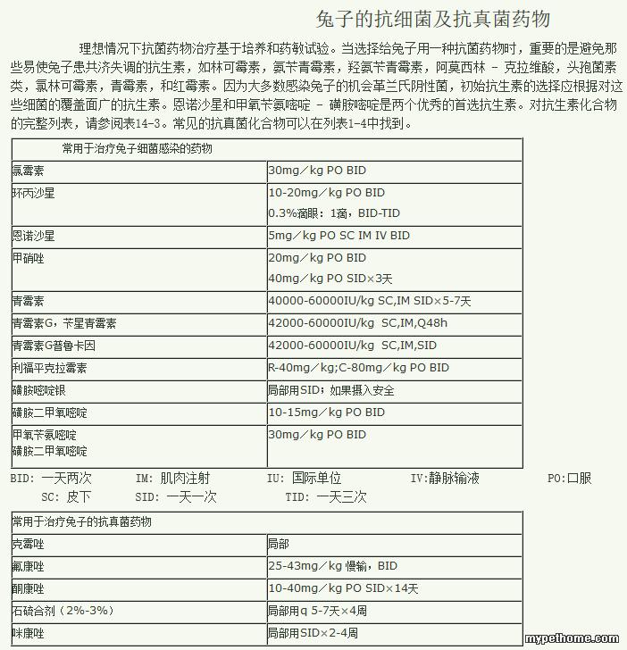 兔子的抗细菌及抗真菌药物_烟台宠物医生王_新浪博客.png